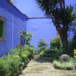 Frida Kahlo House Museum