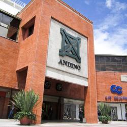 Centre commercial Andino