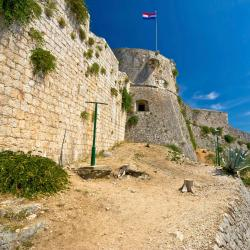 Fortica Fortress