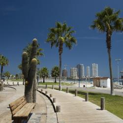 Cavancha Beach