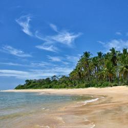 Itapororoca Beach