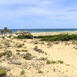 Playa El Carabassí
