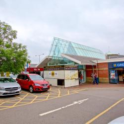 Reading Services M4