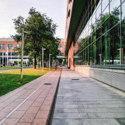 Universidad Politécnica de Turín