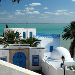 Gulf of Tunis