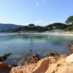 Pantai Palombaggia