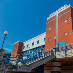 Спортивно-концертный комплекс Arena Birmingham
