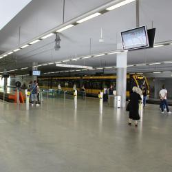 Estació de metro de Trindade