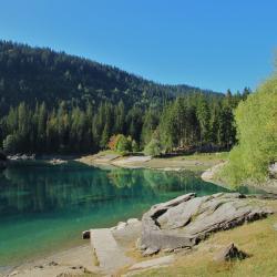 Jezioro Cauma, Flims