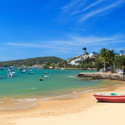 阿爾馬桑海灘(Armação Beach)
