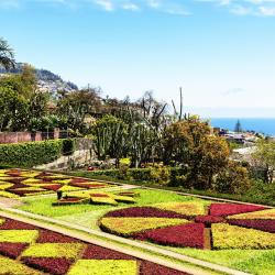 Botanische tuin van Madeira