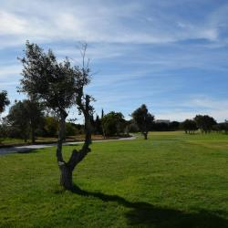 Campo de Golf Millennium  - Vilamoura
