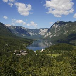 Bohinj Region 46 vacation homes