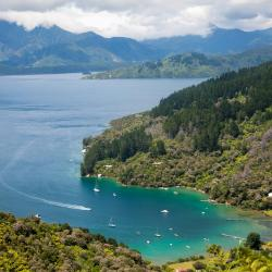 Marlborough Sounds 7 хостелів