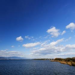 Lake Biwa 18 отелей типа «постель и завтрак»