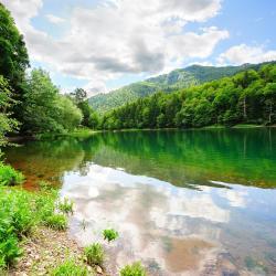 Biogradska Gora Nationaal Park