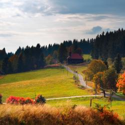 Moravskosliezský kraj