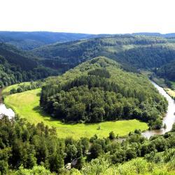 Ardennes Belge
