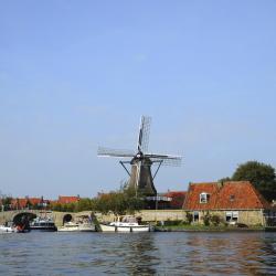 Friisimaa