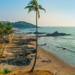 North Goa 31 glamping sites