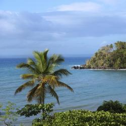 Greater Antilles 768 accessible hotels