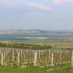 South Moravia 14 кемпингов