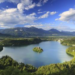 Bled Region 34 vacation homes