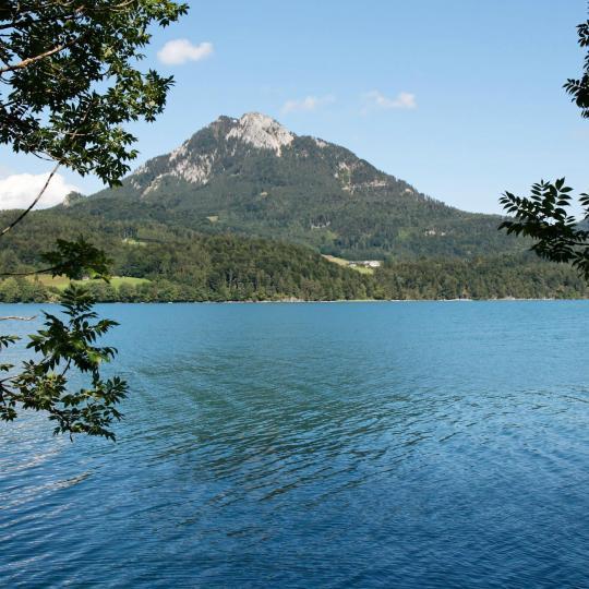 Nuotare nel lago Fuschlsee