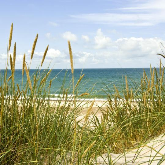 Henne Beach