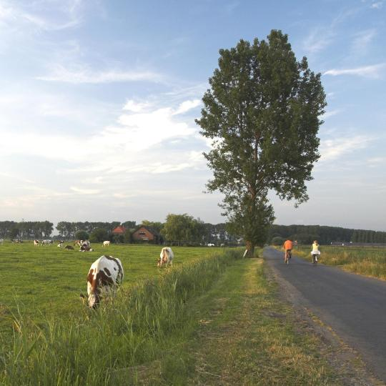 Frisian Eleven Cities Tour by bike