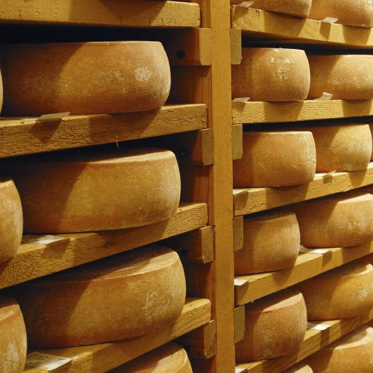 Ekskursijas pa rakletes sieru rūpnīcām