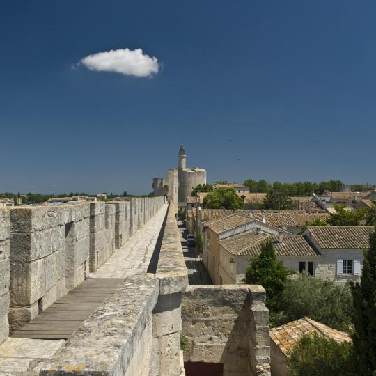 Centre medieval d'Aigues-Mortes