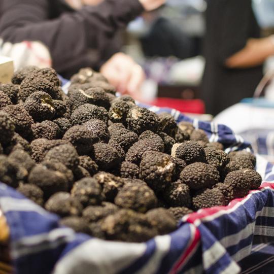 De zwarte truffel