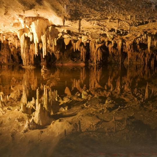 Grotten van Pech Merle