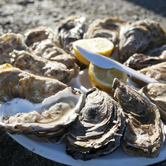 De oesters van Cancale