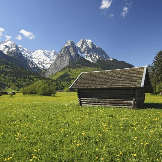 Escursioni nella Foresta bavarese