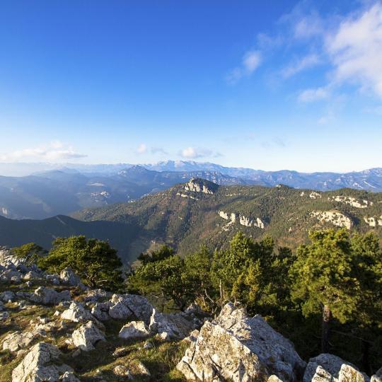 Naturschutzpark Vulkane der Garrotxa