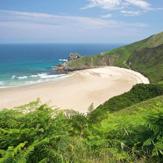 Strand Torimbia