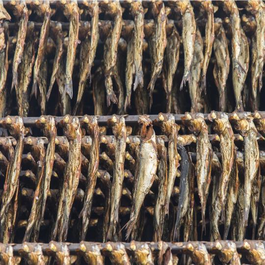 Vis en friet bij Fischräucherei Kuse