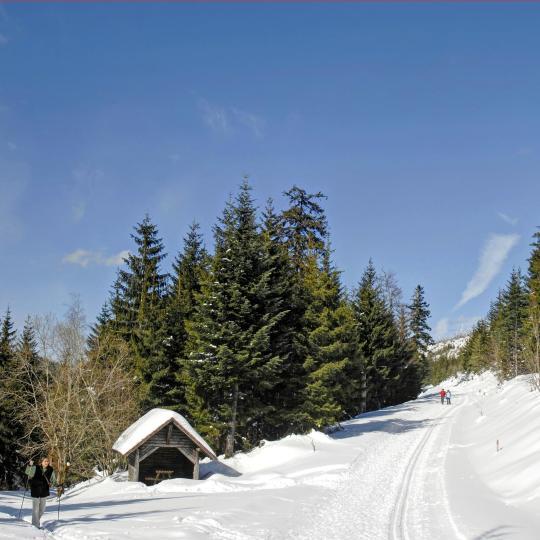 Für Winterspaß die Skier umschnallen