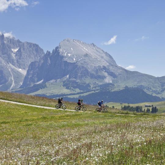 Tutti in sella alle biciclette sulle Dolomiti