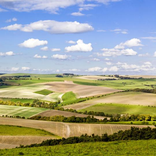 The rolling hills of the South Downs