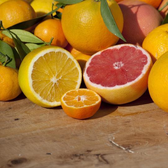 Citrus fruits unite at Muravera