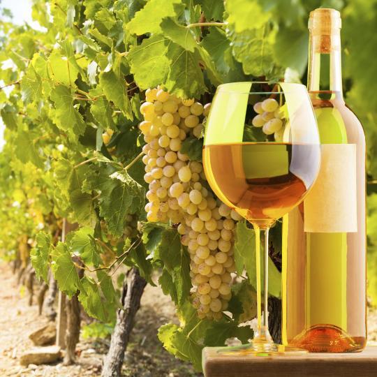 Denominazione di Origine Controllata (DOC) wines