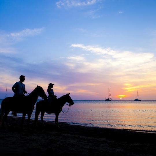 Horseback riding in Skiathos