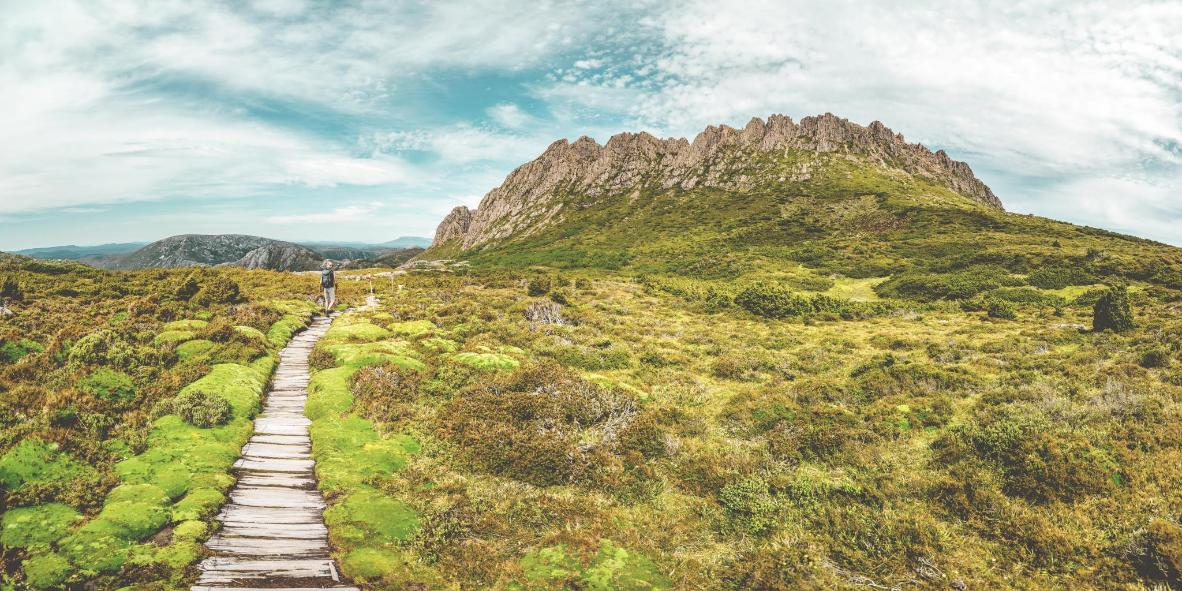Hike Tasmania's Overland Track, a route through misty rainforest punctuated with Cradle Mountain views