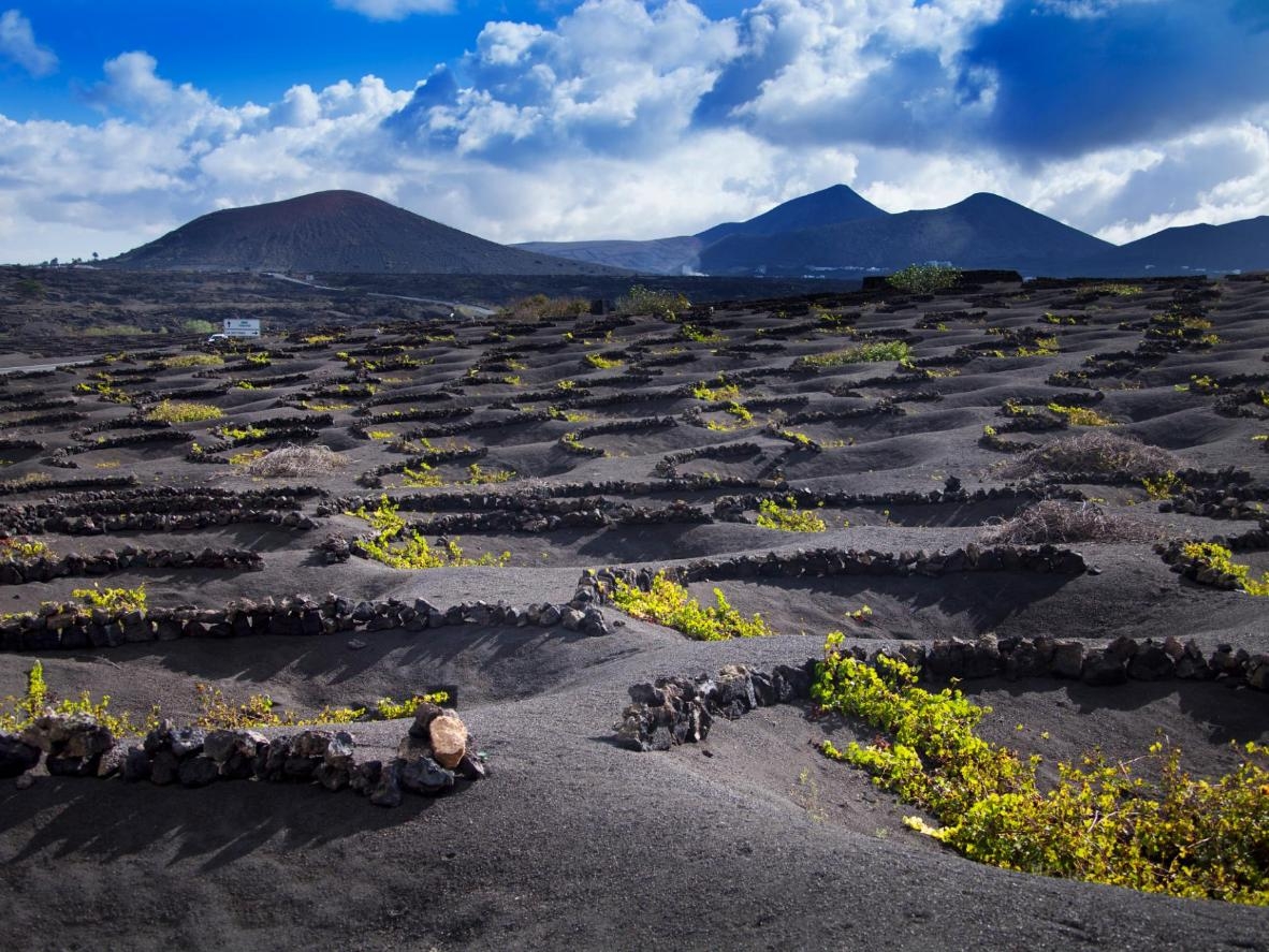 The terrain in Lanzarote is completely made up of volcanic soil