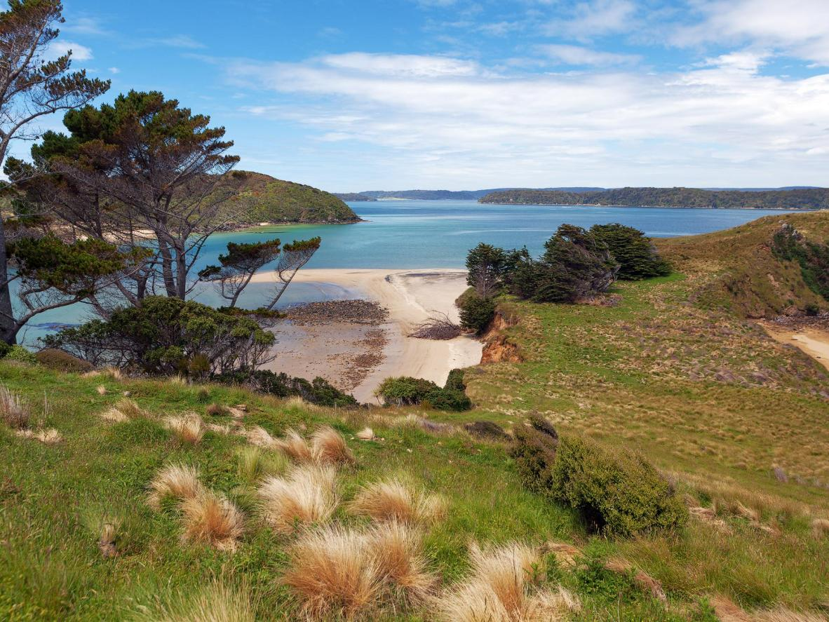 The stunning, windswept coast of Stewart Island