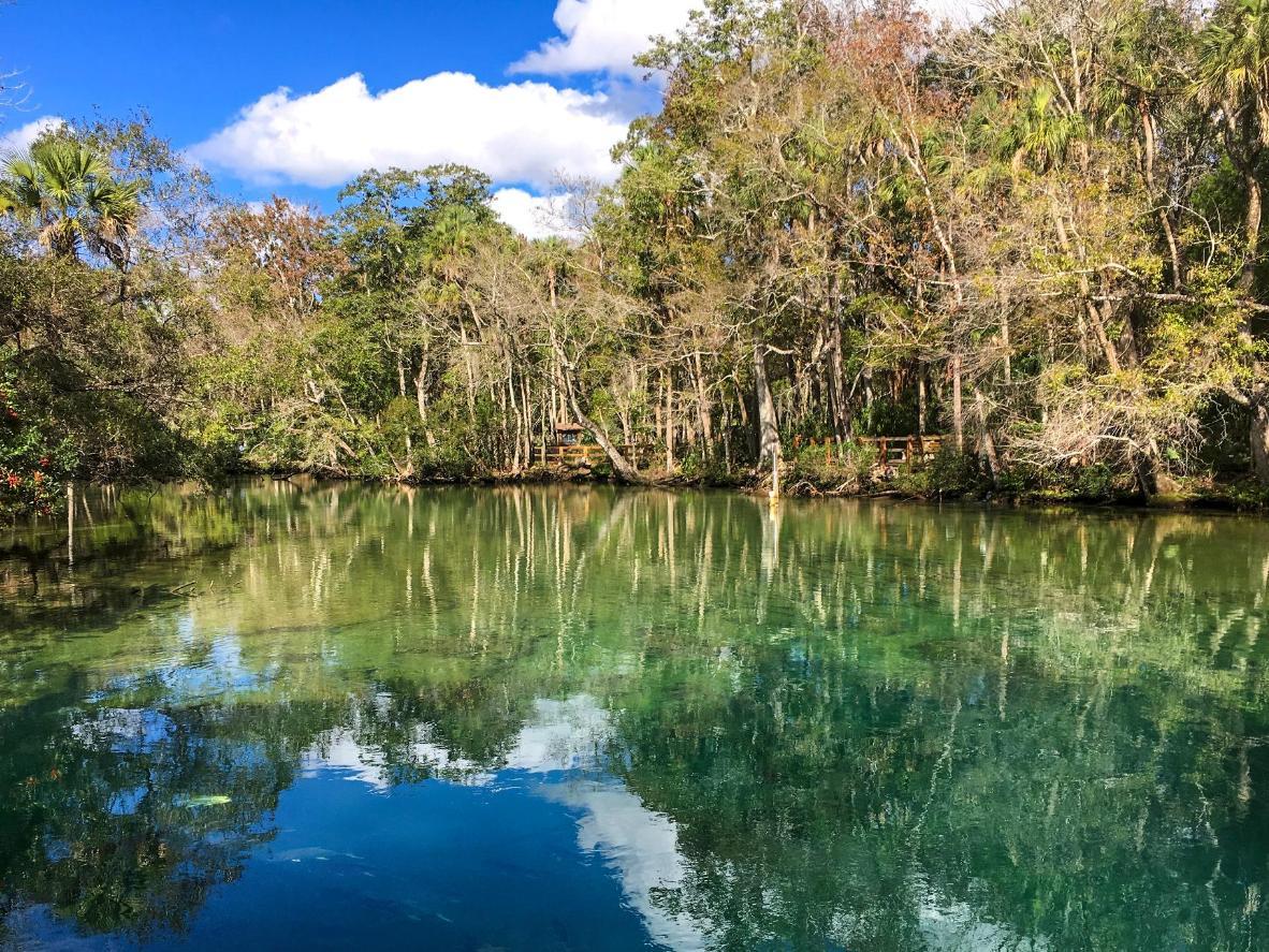 Freshwater springs in Florida