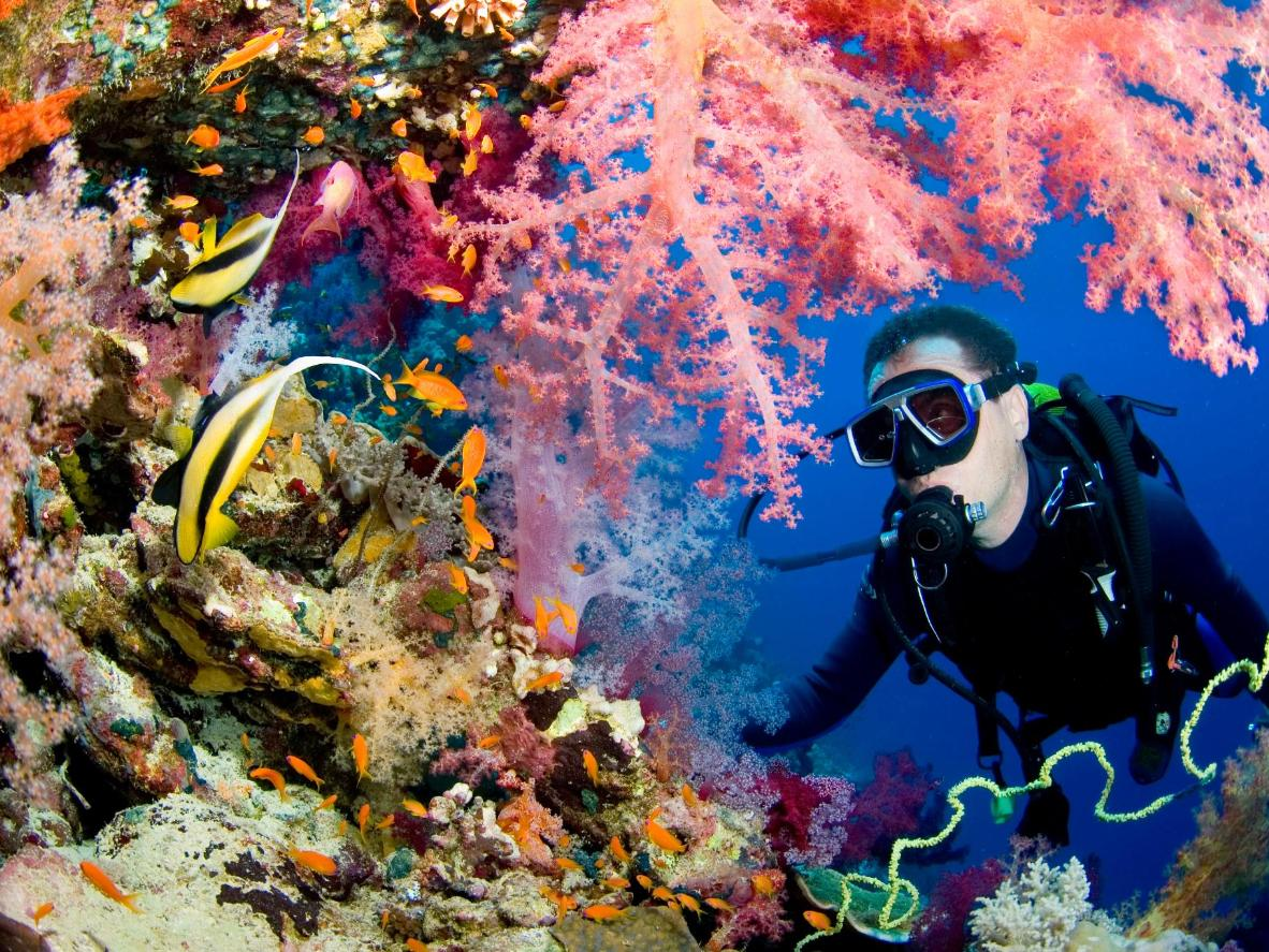 Puerto Princesa is home to a wealth of diving spots